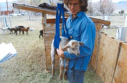 student_weighs_goat_17DEC0026.pdf