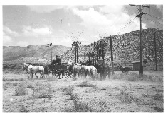 horses_wagons_1938_17DEC0011.pdf