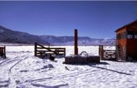 snow_TG70_slaughterhouse_17DEC0536.pdf