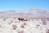 Death Valley horseback trip (2 images)
