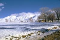 snow_TG70_BH_Choc_Mt_17DEC05037.pdf