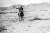 Cowboy_on_horse-141014-0025_17DEC0267.pdf