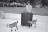 p344_PS_w_goats_17DEC0395.pdf